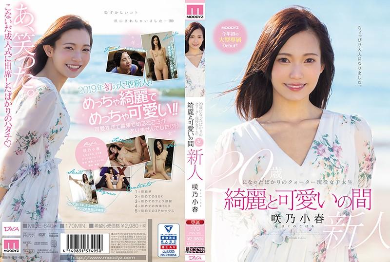 20歳になったばかりのクォーター現役女子大生 綺麗と可愛いの間 咲乃小春0